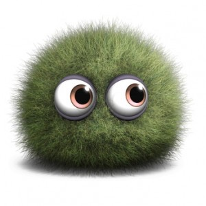 This mold spore looks cute, but it can actually cause a lot of harm if not removed correctly.